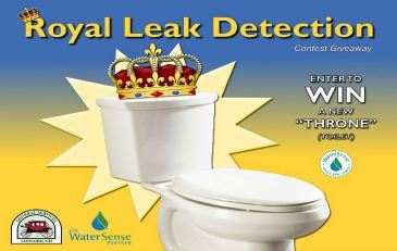2019 Royal Leak Detection Contest