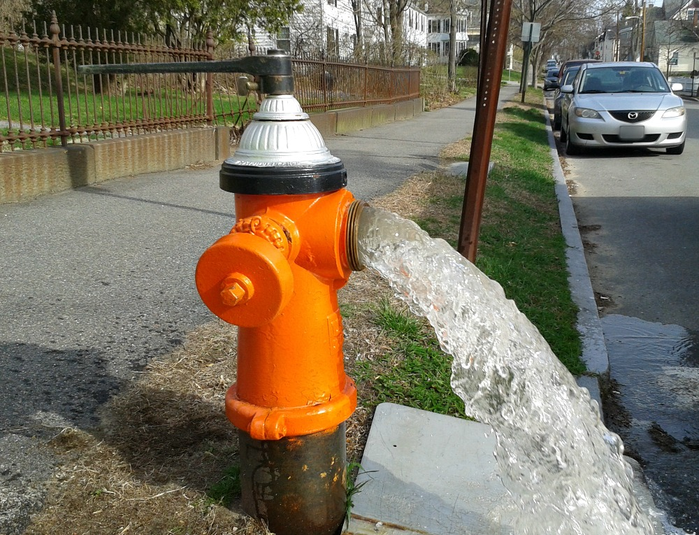 General Services Hydrant Flushing